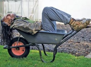 Danny Clarke: 'Gardening Is Good For The Soul'